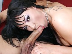 Nasty Brunette Swallows A Cum Mouthful